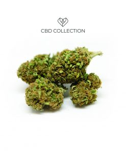 grapeskunk cbd collection 247x296 - CBD COLLECTION Grape Skunk | CBD 10% | 2gr | Cannabis legale