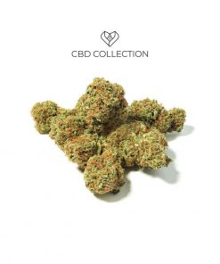 white widown cbd collection 247x296 - CBD COLLECTION White Widow | CBD 9% | 2gr | Cannabis legale